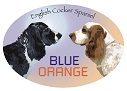 Blue Orange Dogs